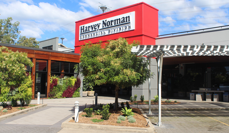 Harvey-2